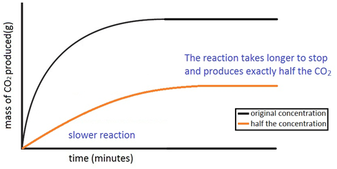 to investigate the rate of reaction The effect of concentration on reaction rates this page describes and explains the way that changing the concentration of a solution affects the rate of a reaction be aware that this is an introductory page only if you are interested in orders of reaction, you will find separate pages dealing with these.